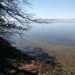 Nushka_Cass Lake